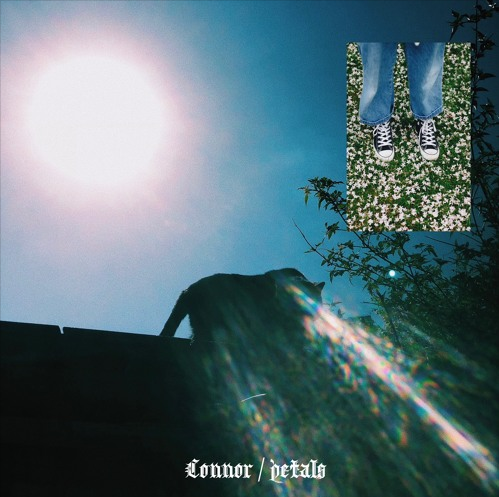Connor releases new Track 'Petals'